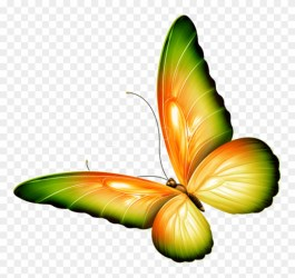 Free Png Download Yellow And Green Transparent Butterfly Transparent Background Butterfly Clipart #2724178 PikPng