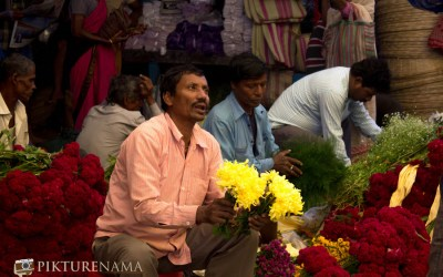 Mullick Ghat Flower market Kolkata – A photowalk and some tips