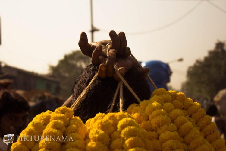 Mullick Ghat flower market Kolkata 14