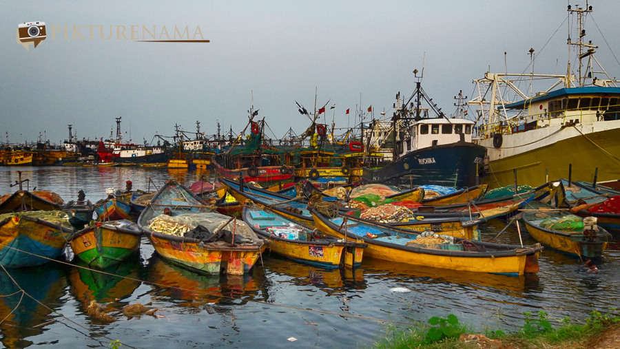 Vizag fishing harbour 22