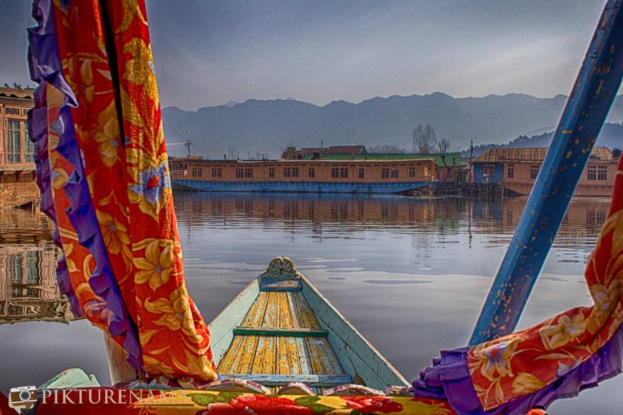 Shikara Ride in Dal Lake 8
