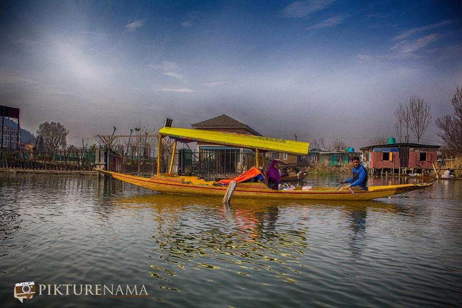 Shikara Ride in Dal Lake 17