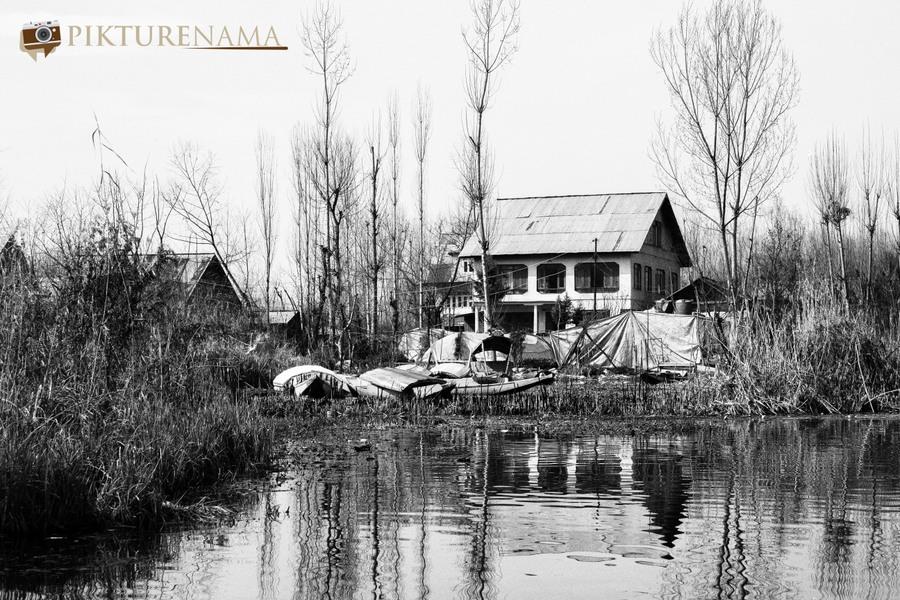 Shikara Ride in Dal Lake 29