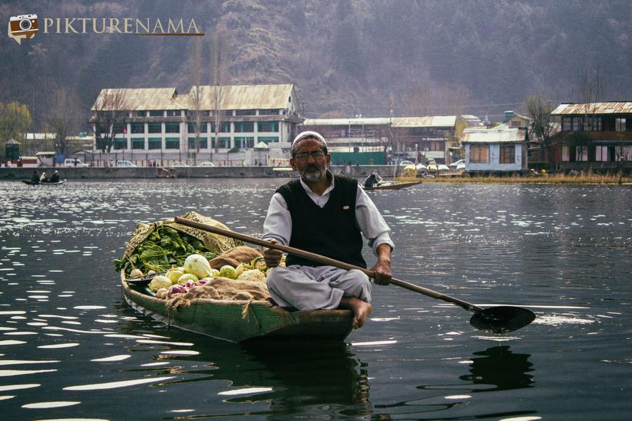 Shikara Ride in Dal Lake 33