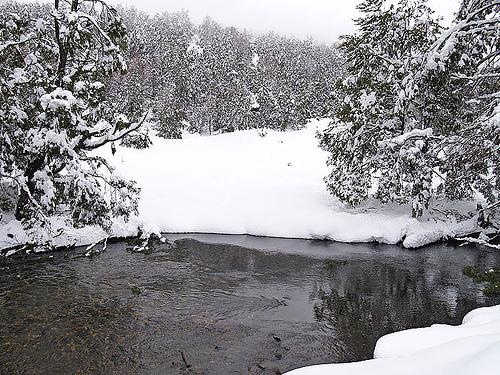 crudo-invierno