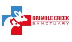 Brindle creek logo