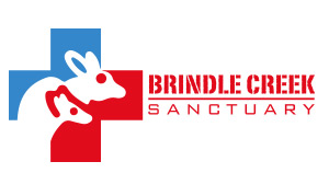 Brindle creek logo