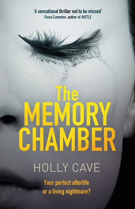 The Memory Chamber by Holly Cave