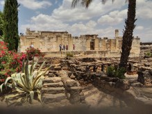 Synagogue and private homes in Capernaum