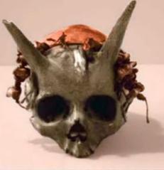 horned-skull