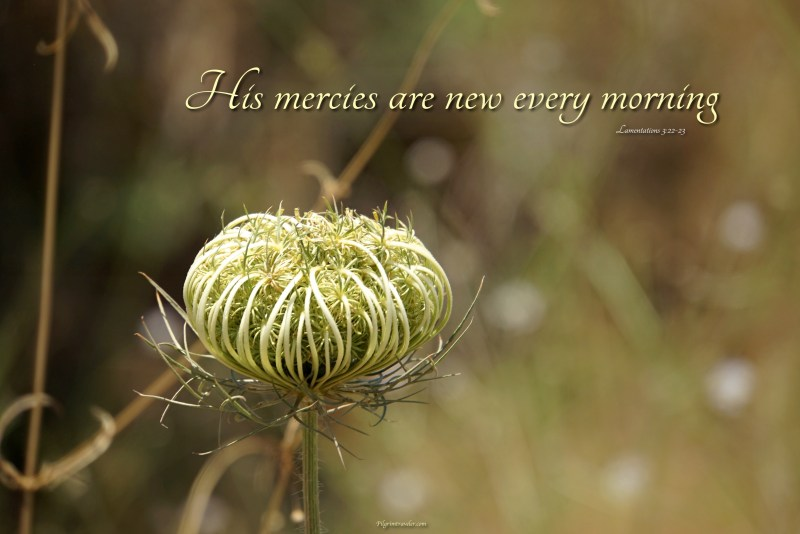 """Lamentations 3:22-23 """"His mercies are new every morning."""""""