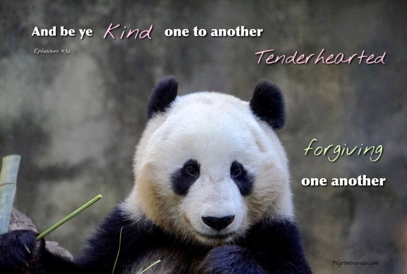 """Ephesians 4:32 """"And be ye kind one to another, tenderhearted, forgiving one another, even as God for Christ's sake hath forgiven you."""""""