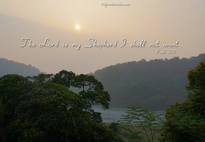 "Psalm 23:1 ""The Lord is my Shepherd; I shall not want."""
