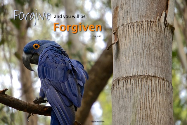 "Luke 6:37 ""Forgive, and you will be forgiven."""