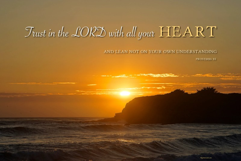 "Proverbs 3:5 ""Trust in the Lord with all your heart and lean not on your own understanding."""