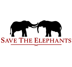 Pilipili Creative Ltd., Nairobi, Kenya, East Africa, Africa, digital marketing, digital advertising, online marketing, online advertising, website development, websites, web development, design, layout, development, online development, online, digital, clients, portfolio, STE, Save the Elephants