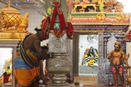 Ealaam Thiruvilaa (Kaalai) - Mahotsavam 2014 (3)