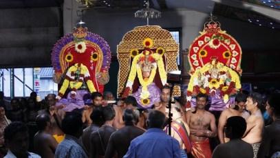 Ettaam Thiruvilaa (Iravu) - Mahotsavam 2014 (37)