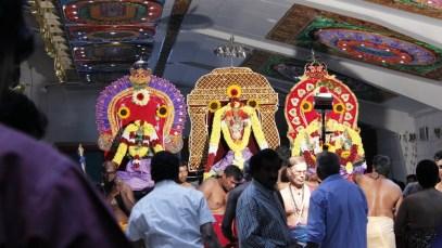Ettaam Thiruvilaa (Iravu) - Mahotsavam 2014 (41)
