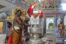 Ettaam Thiruvilaa (Kaalai) - Mahotsavam 2014 (2)
