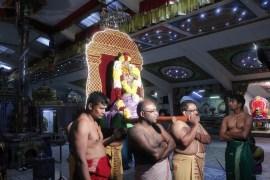 Ettaam Thiruvilaa (Kaalai) - Mahotsavam 2014 (27)