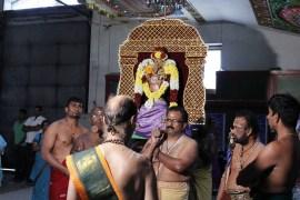Ettaam Thiruvilaa (Kaalai) - Mahotsavam 2014 (35)