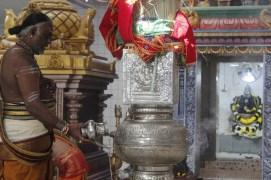 Ettaam Thiruvilaa (Kaalai) - Mahotsavam 2014 (5)