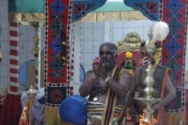 Ettaam Thiruvilaa (Kaalai) - Mahotsavam 2014 (61)