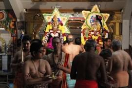Naangaam Thiruvilaa (Iravu) - Mahotsavam 2014 (34)
