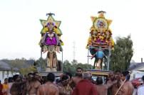 Naangaam Thiruvilaa (Iravu) - Mahotsavam 2014 (79)