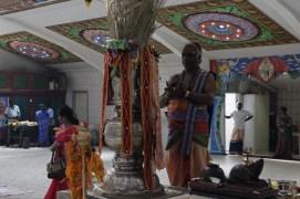 Naangaam Thiruvilaa (Kaalai) - Mahotsavam 2014 (11)