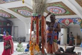 Naangaam Thiruvilaa (Kaalai) - Mahotsavam 2014 (12)