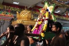Naangaam Thiruvilaa (Kaalai) - Mahotsavam 2014 (35)
