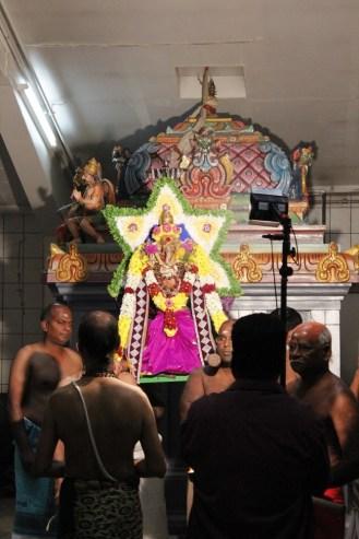 Naangaam Thiruvilaa (Kaalai) - Mahotsavam 2014 (36)
