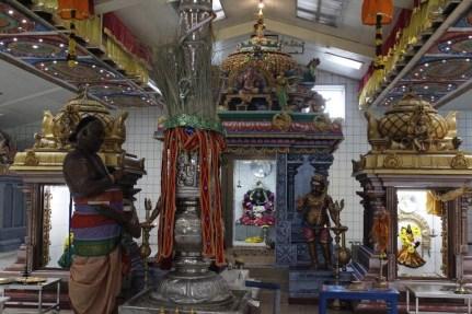 Naangaam Thiruvilaa (Kaalai) - Mahotsavam 2014 (5)