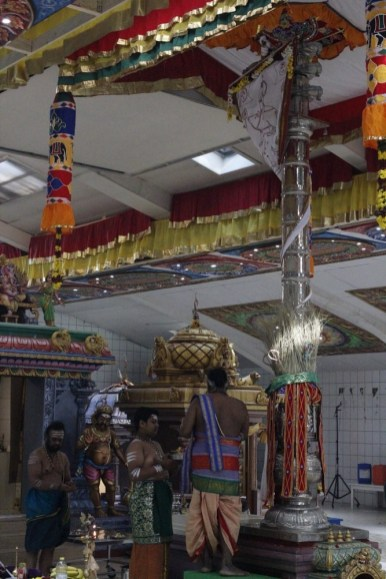 Naangaam Thiruvilaa (Kaalai) - Mahotsavam 2014 (6)