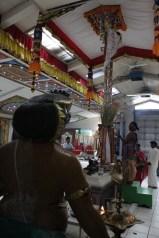 Naangaam Thiruvilaa (Kaalai) - Mahotsavam 2014 (9)