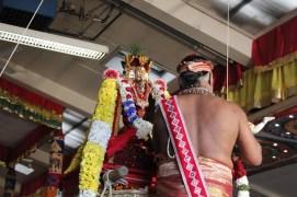 Onbathaam Thiruvilaa (Therthiruvilaa) - Mahotsavam 2014 (187)