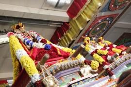 Onbathaam Thiruvilaa (Therthiruvilaa) - Mahotsavam 2014 (216)