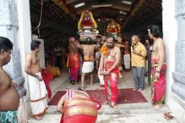 Onbathaam Thiruvilaa (Therthiruvilaa) - Mahotsavam 2014 (227)