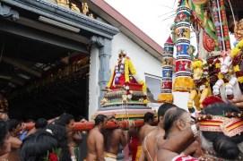 Onbathaam Thiruvilaa (Therthiruvilaa) - Mahotsavam 2014 (231)
