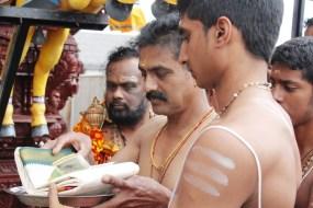 Onbathaam Thiruvilaa (Therthiruvilaa) - Mahotsavam 2014 (256)