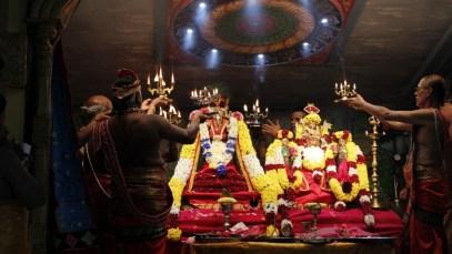 Onbathaam Thiruvilaa (Therthiruvilaa) - Mahotsavam 2014 (29)