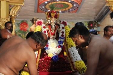 Onbathaam Thiruvilaa (Therthiruvilaa) - Mahotsavam 2014 (43)