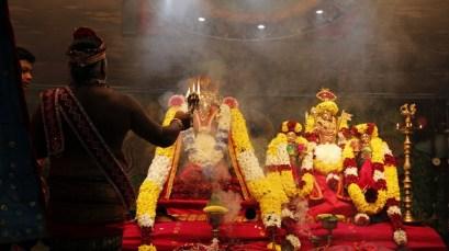Onbathaam Thiruvilaa (Therthiruvilaa) - Mahotsavam 2014 (5)