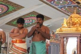 PaththaamThiruvilaa (Kodiyirakkam) - Mahotsavam 2014 (194)