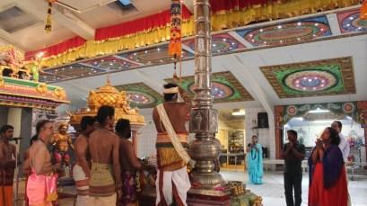 PaththaamThiruvilaa (Kodiyirakkam) - Mahotsavam 2014 (83)