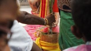 பத்தாம் திருவிழா – தீர்த்தம் (மகோற்சவம் 2014) 111