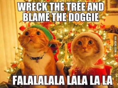 Jõulukingiprobleemid