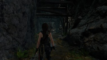 Shadow of the Tomb Raider_134